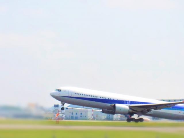 航空会社の介護割引