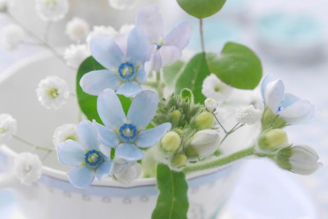 カップに指した花