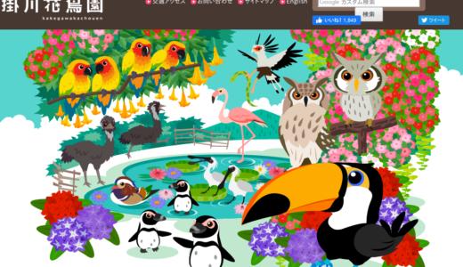 掛川花鳥園のシニア料金|シニア割引