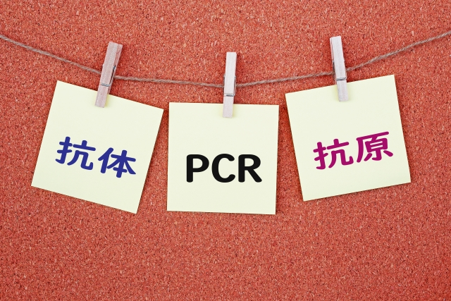 PCR検査とは