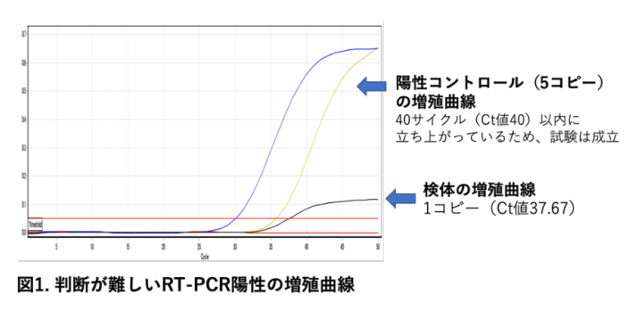 RT-PCR陽性の増殖曲線